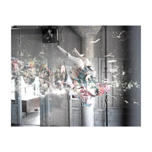 ImageBuilding6522_alcatraz